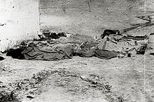 Anti-Asian Violence, corpses of Chinese immigrants, murder during the Los Angeles Massacre of 1871