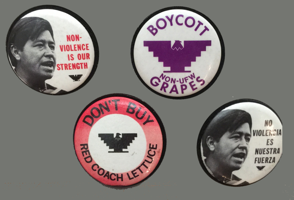 Today in Labor History March 31, Birth of Cesar Chavez. Buttons from various UFW campaigns.