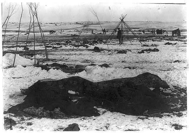 In the wake of the Wounded Knee Massacre, 1890.
